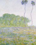 Monet, Claude Oscar A Meadow at Giverny , 1894	 Art Reproductions