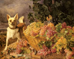 8849 A Dog By A Basket Of Fruits Art Reproductions