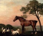 Stubbs  George A Bay Hunter With Two Spaniels, 1777 Art Reproductions