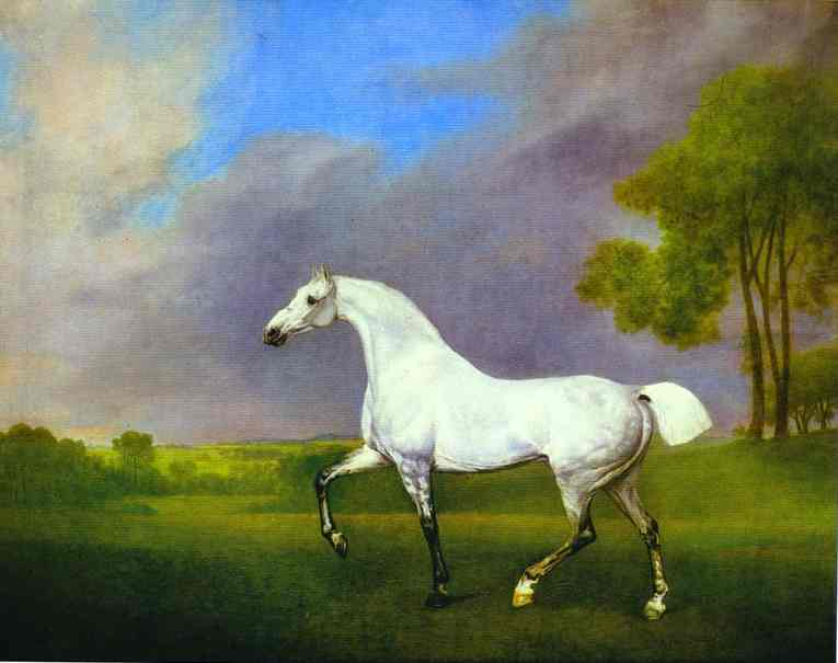 A Grey Horse, 1793  Painting Reproductions