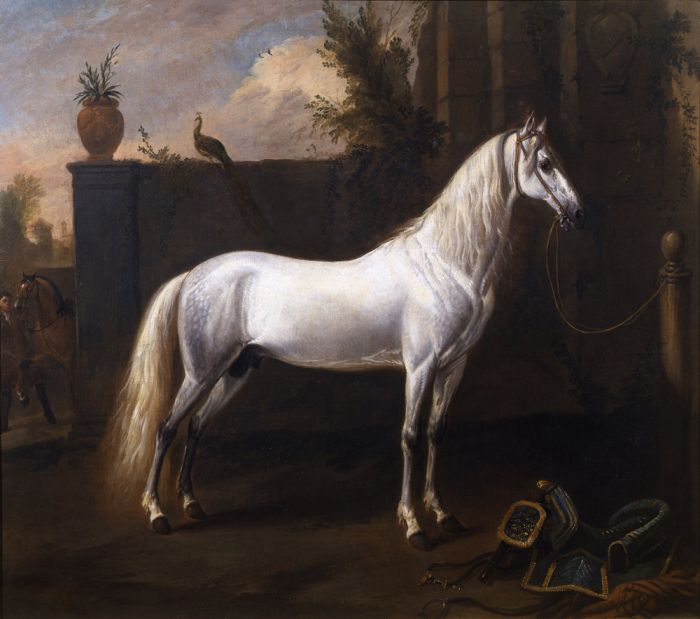 Grey Stallion tethered to a Post  Painting Reproductions