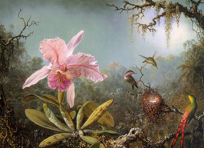 Paintings Heade, Martin Johnson