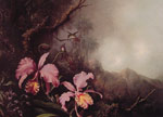 Heade, Martin Johnson Two Orchids in a Mountain Landscape, c.1870 Art Reproductions