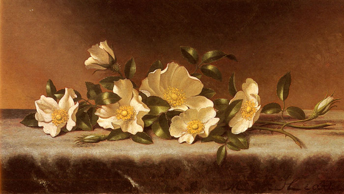 Cherokee Roses On A Light Gray Cloth  Painting Reproductions