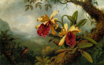 Heade, Martin Johnson Orchids and Hummingbird, c.1875-1883 Art Reproductions