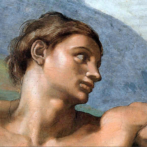 The Face of Adam ( Detail from the Scene Creation of Adam ))  Painting Reproductions
