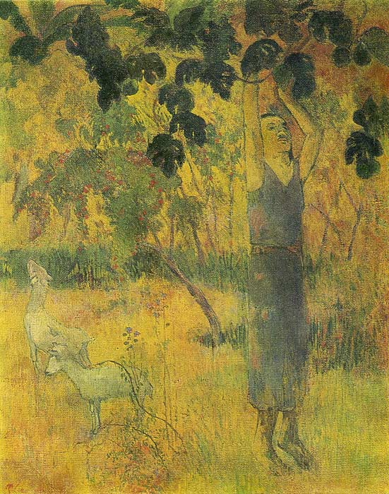 Man Picking Fruit, 1897  Painting Reproductions