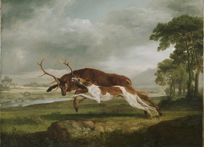 Hound Coursing a Stag, 1762  Painting Reproductions