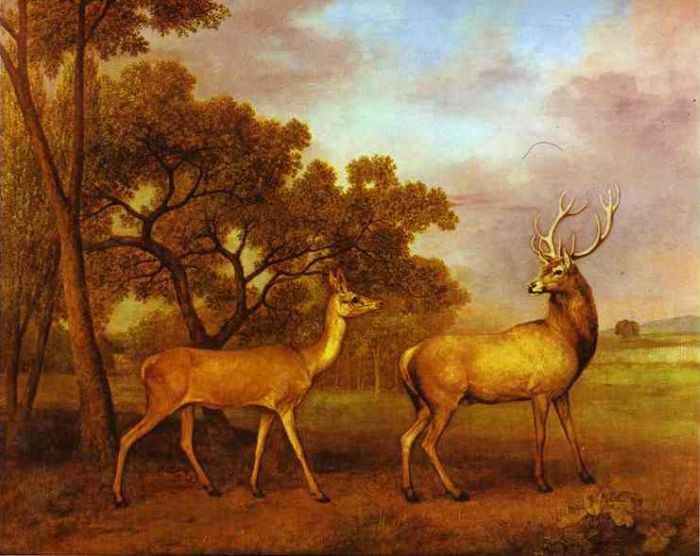 Red Deer Stag and Hind, 1972  Painting Reproductions