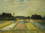 Vincent van Gogh Field with Flowers, 1883 Art Reproductions