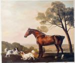G. Stubbs Oil Paintings Reproductions