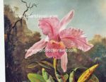 Heade Paintings Reproductions